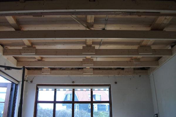 Plafond03